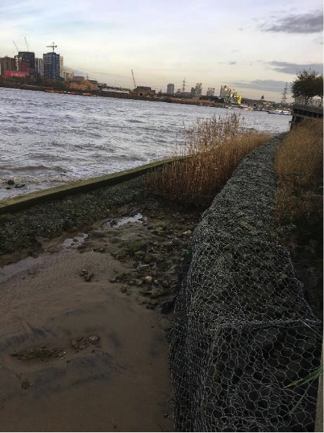 Greenwich Peninsula North West: Looking downstream at low tide in Autumn 2017